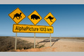 1013_ - Australian Warning Signs
