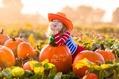 1014_ - Pumpkin