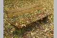 229_ - Bench