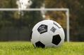 499_ - Classic Soccer Ball