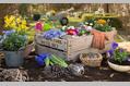 983_ - Gardening