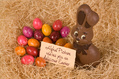 357_ - Chocolate Easter Bunny