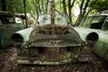 830_ - Car Cemetery 13