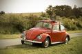 912_ - VW Beetle